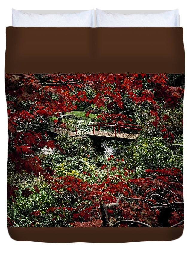 Acer Duvet Cover featuring the photograph Japanese Garden, Through Acer In by The Irish Image Collection