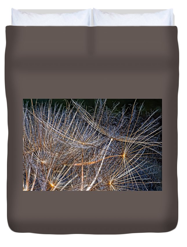 Asteraceae Duvet Cover featuring the photograph Journey Inward by Steve Harrington