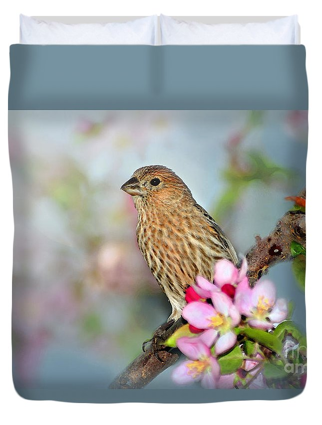 House Finch Duvet Cover featuring the photograph Joy Of Spring by Betty LaRue