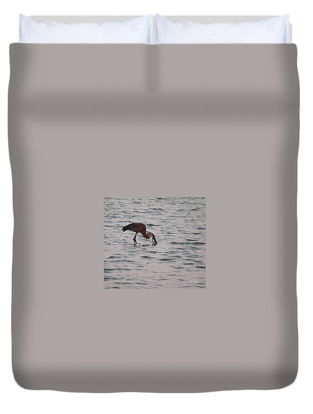 Roena King Duvet Cover featuring the photograph Just A Little Snack by Roena King
