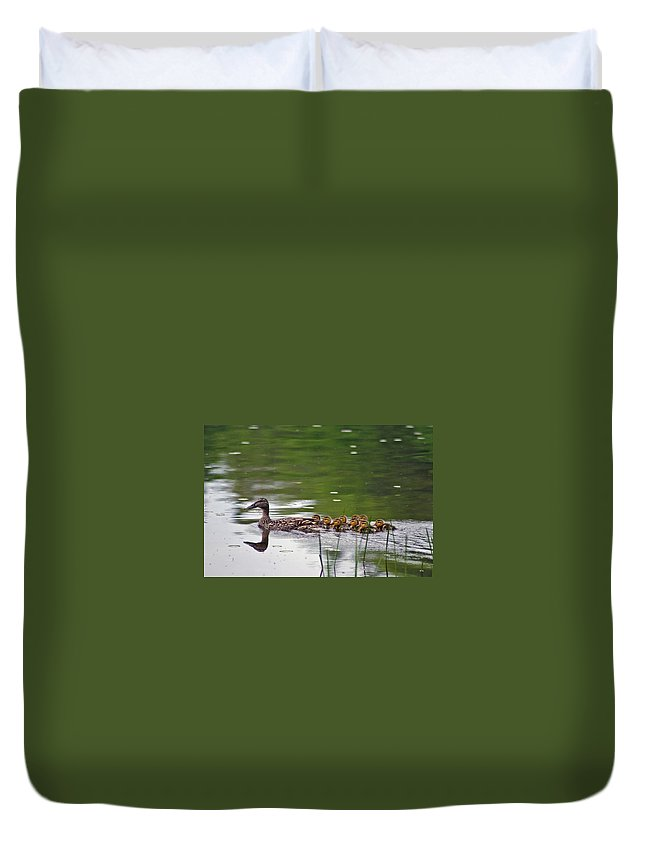 Duck Duvet Cover featuring the photograph Keep Up by David Rucker