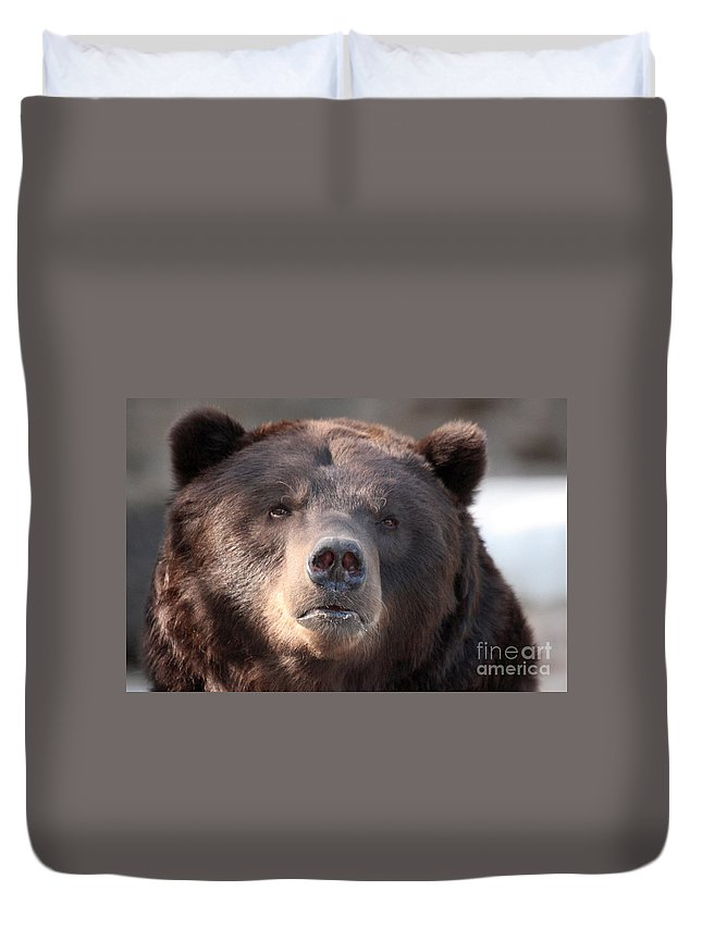 Animal Duvet Cover featuring the photograph Keep Your Eye On The Camera by Alan Look