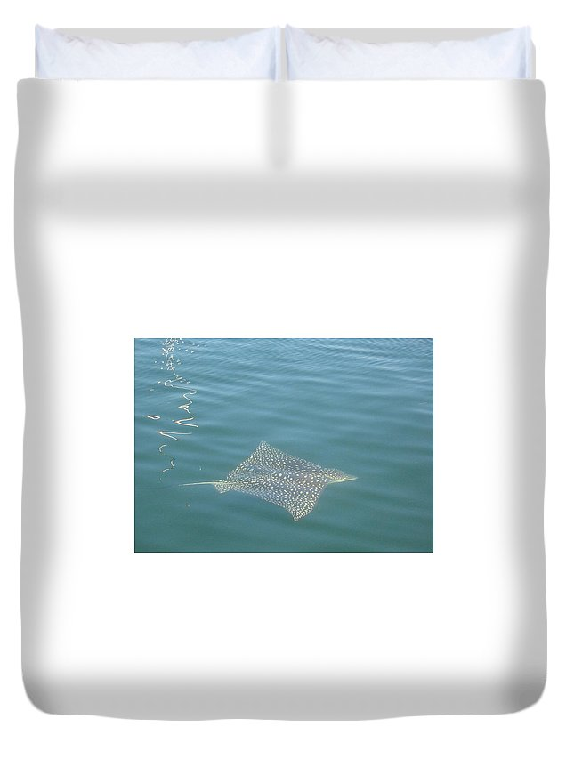 Florida Duvet Cover featuring the photograph Key Largo Ray by Lin Grosvenor
