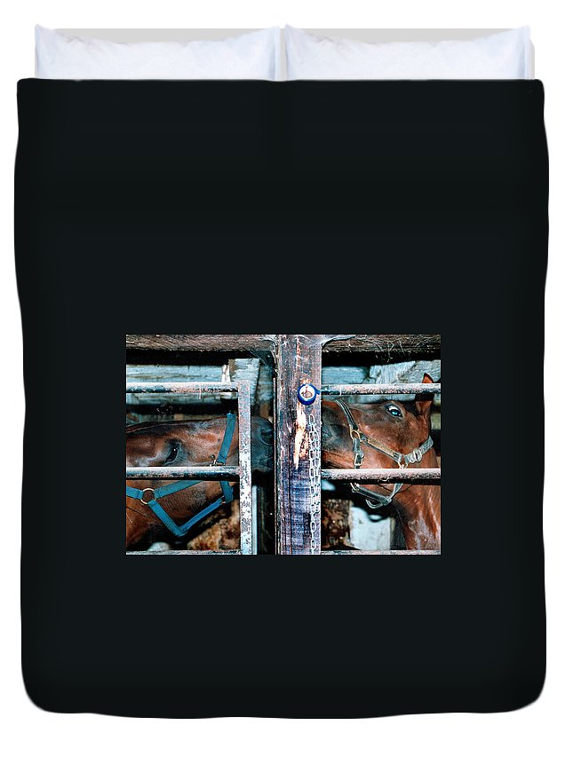Horses In Barn Duvet Cover featuring the photograph Kissing Cousins by Burney Lieberman