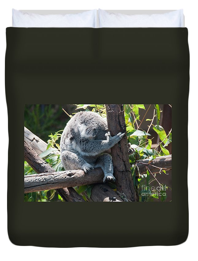 Animals Duvet Cover featuring the digital art Koala by Carol Ailles