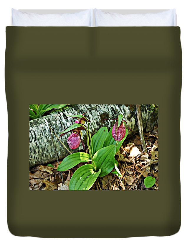 Lady Slipper Duvet Cover featuring the photograph Lady Slipper I by Joe Faherty