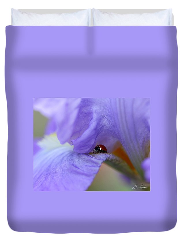 Flower Duvet Cover featuring the photograph Ladybug On Iris by Diana Haronis