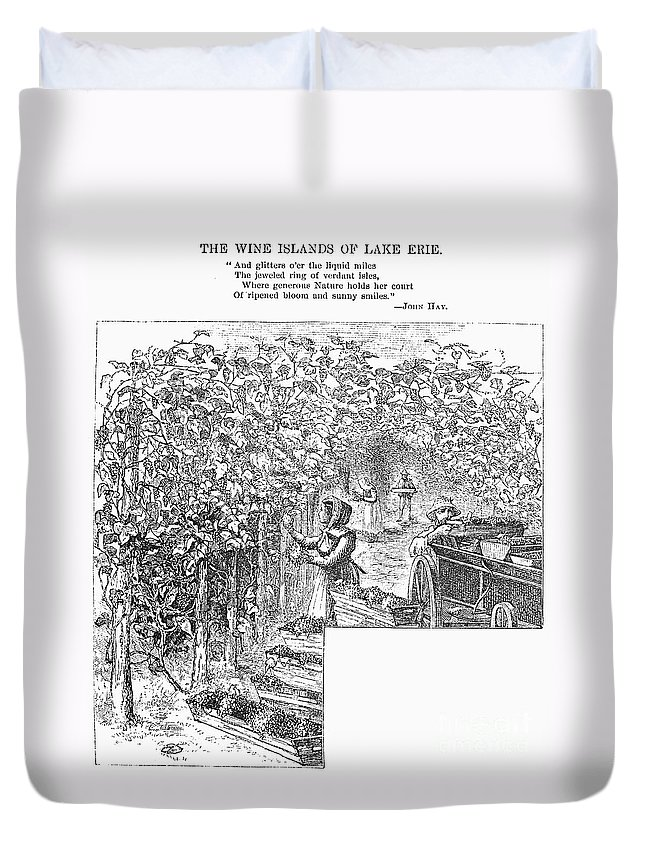 1873 Duvet Cover featuring the photograph Lake Erie: Vineyard, 1873 by Granger