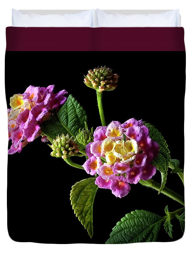 Flower Duvet Cover featuring the photograph Lantana by Endre Balogh