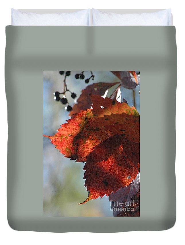 Leaves Duvet Cover featuring the photograph Last Look by Trish Hale