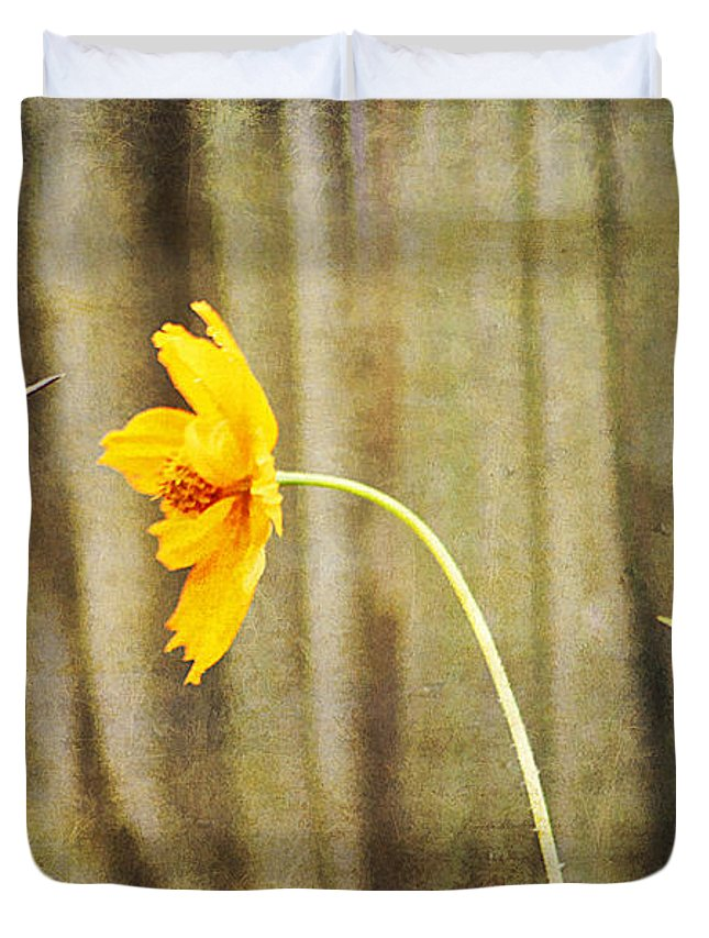 Agility Duvet Cover featuring the photograph Late Summer Delight by Darren Fisher