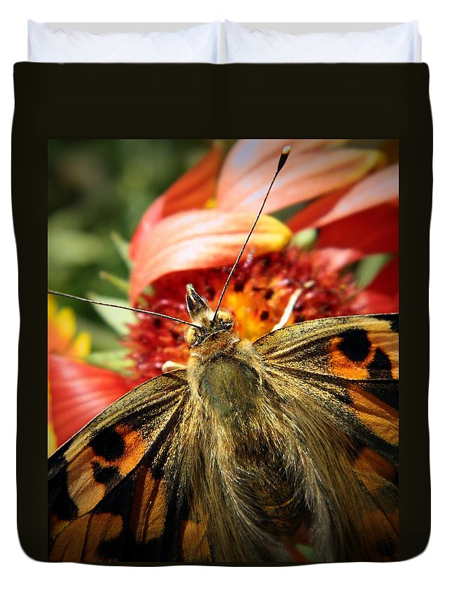 Nature Duvet Cover featuring the photograph Latecomer by Chris Berry