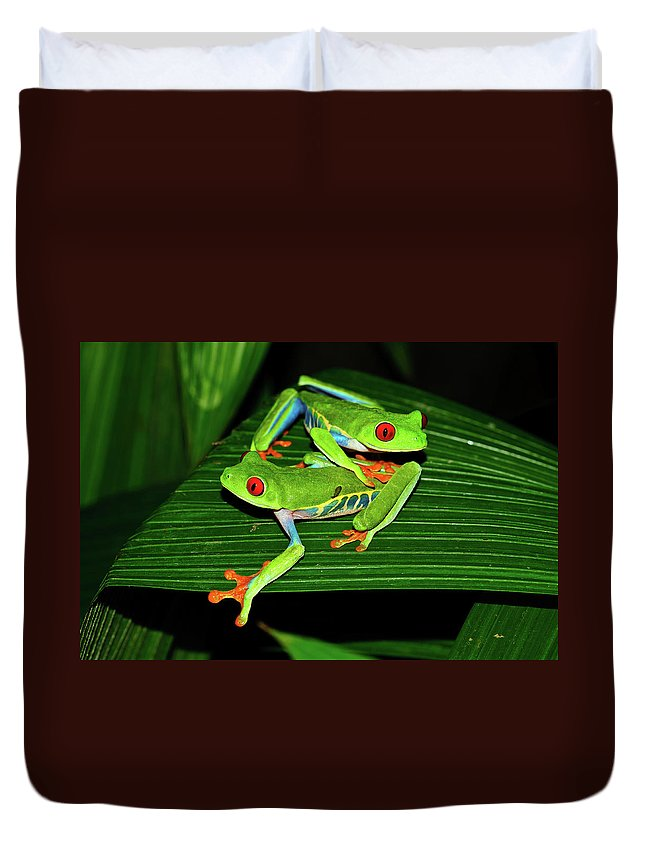 Frog Framed Prints Duvet Cover featuring the photograph Leap Frog by Harry Spitz
