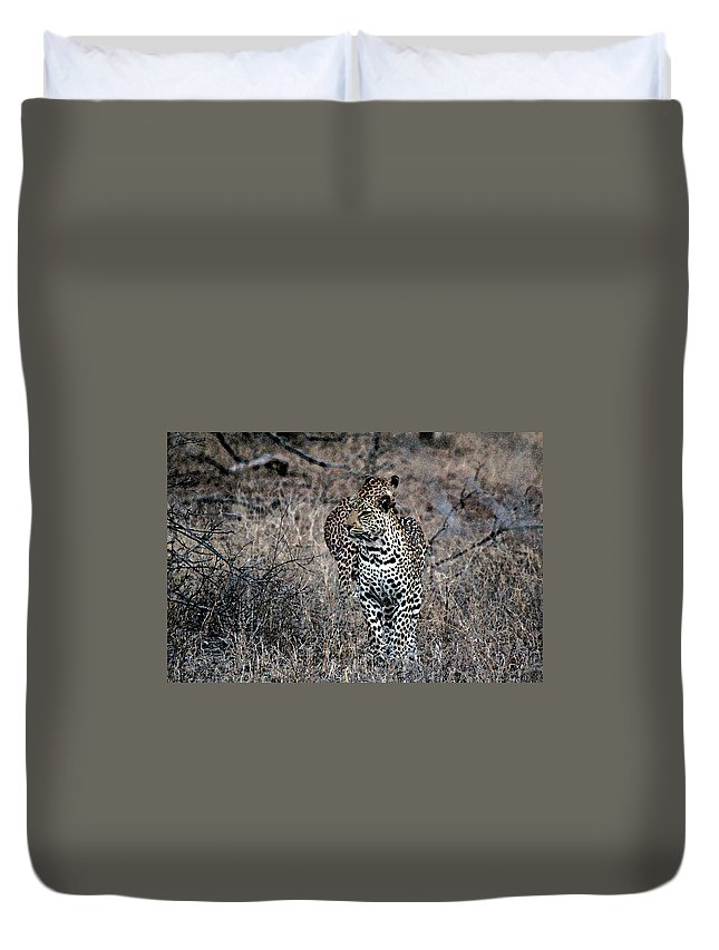 Animal Duvet Cover featuring the photograph Leopard Hunt by Paul Fell