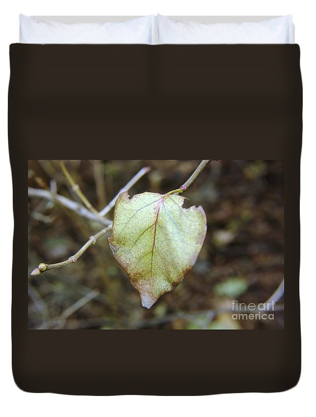Leaves Duvet Cover featuring the photograph Like The Last Brave Soldier by Jeff Swan