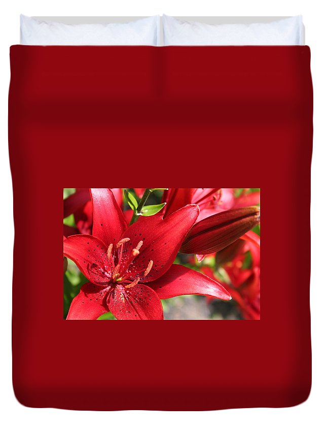 Red Duvet Cover featuring the photograph Lilies In Red by Laurel Talabere