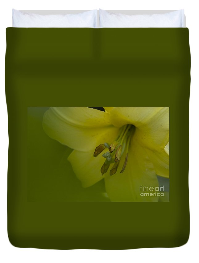 Nature Duvet Cover featuring the photograph Lily Flower by Heiko Koehrer-Wagner