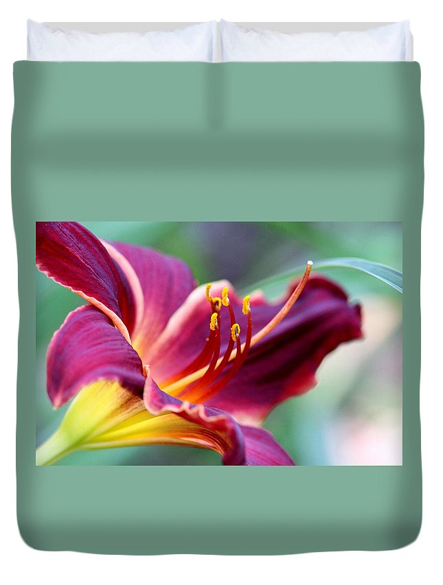 Prints Duvet Cover featuring the photograph Lily - Hardy by Travis Truelove