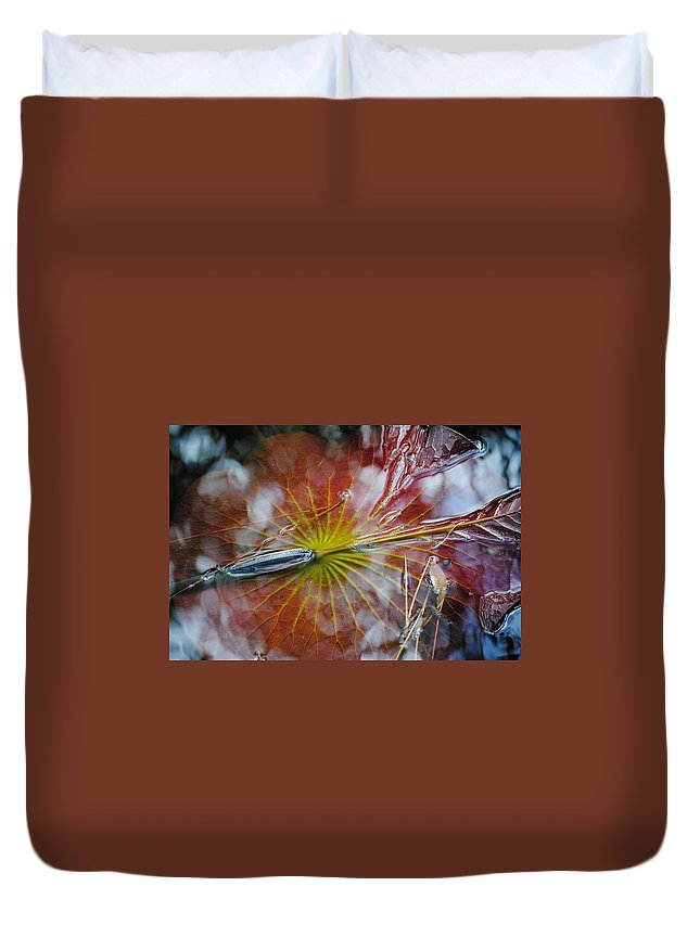 Lily Pad Duvet Cover featuring the photograph Lily Pad by Charlie Day