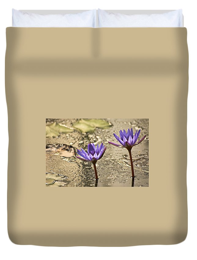 Lily Duvet Cover featuring the photograph Lily Twins by Carolyn Marshall