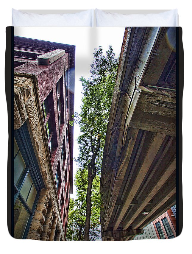 City Duvet Cover featuring the photograph Lines And Trees by Karen Ulvestad