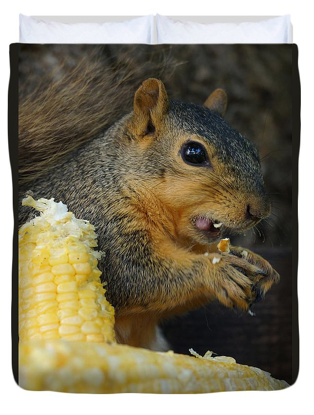 Squirrel Duvet Cover featuring the photograph Lip Smackin Good by Lori Tordsen