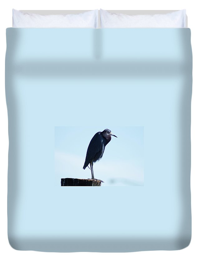 Little Blue Heron Duvet Cover featuring the photograph Little Blue Heron I by Joe Faherty
