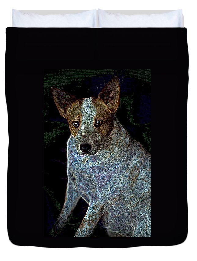 Austalian Cattle Dog Duvet Cover featuring the photograph Little Blue by One Rude Dawg Orcutt