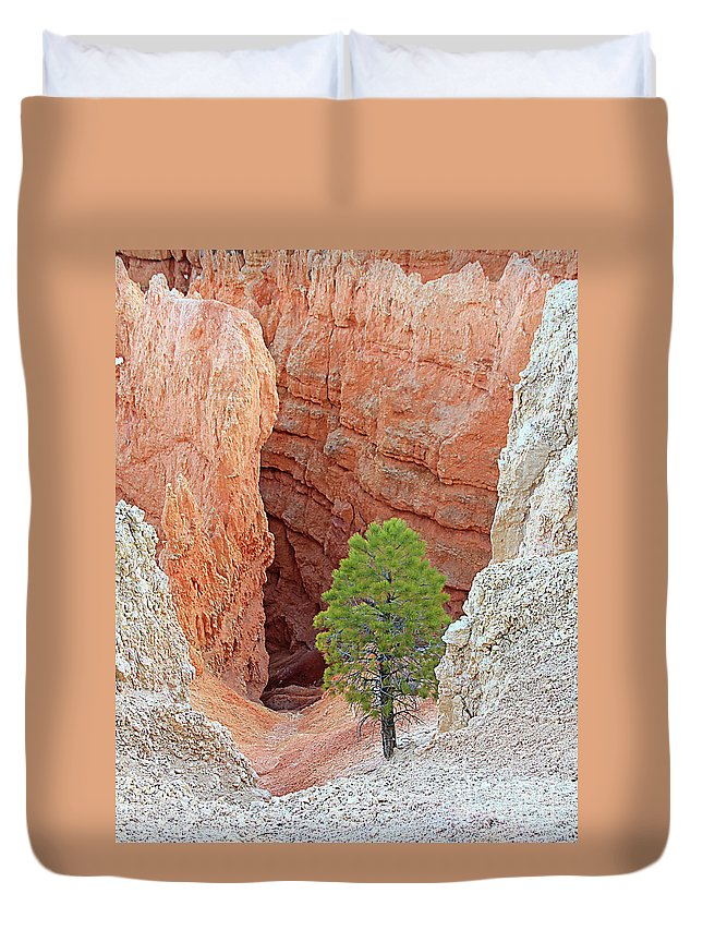 Bryce National Park Duvet Cover featuring the photograph Lone Tree At Bryce National Park by Jack Schultz