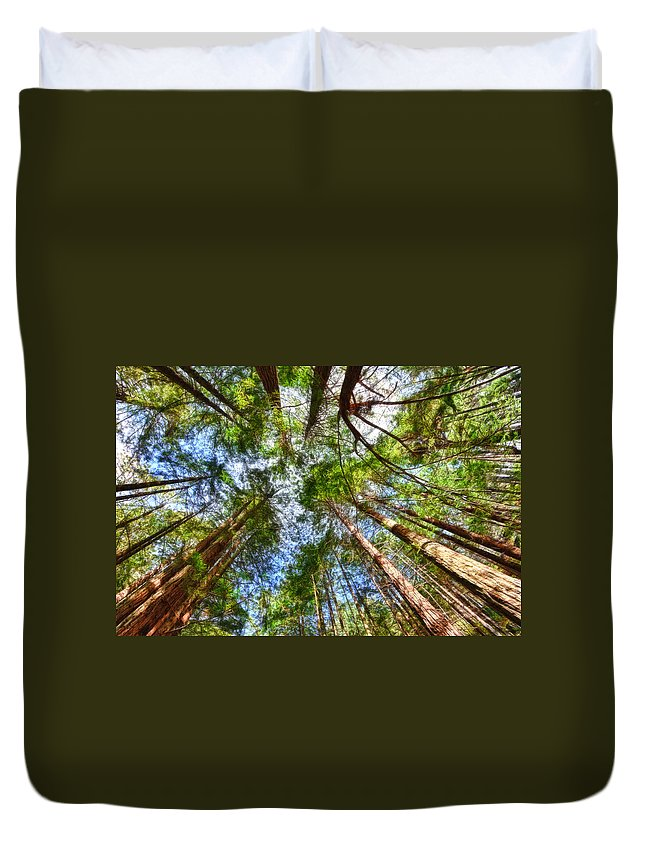 Redwoods Duvet Cover featuring the photograph Look To The Sky by Beth Sargent