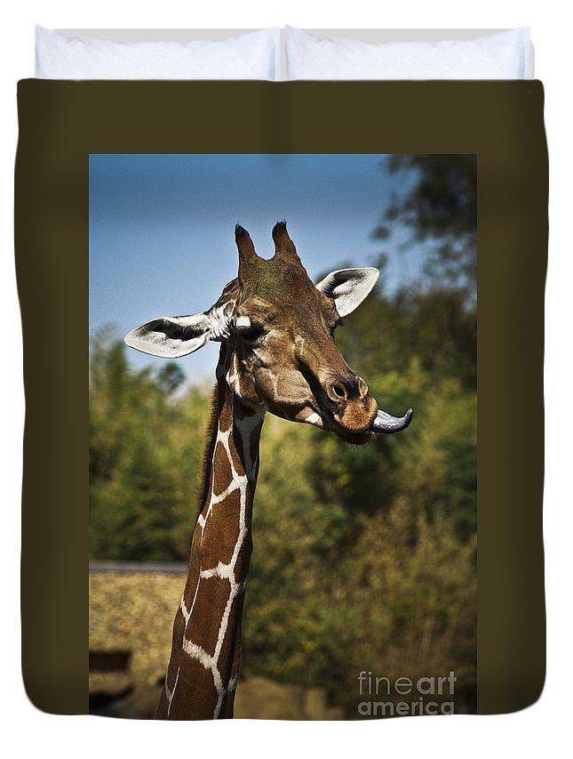 Giraffe Duvet Cover featuring the photograph Loose Lips by Kim Henderson