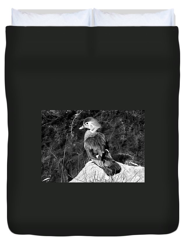 Bird Duvet Cover featuring the photograph Lovely To Look At In Black And White                                 by Burney Lieberman