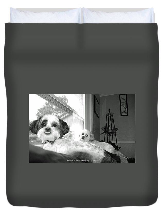 Dog Duvet Cover featuring the photograph Loyal Till The End by G Adam Orosco