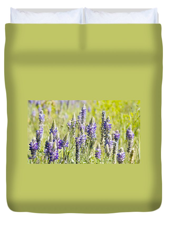 Lupine Duvet Cover featuring the photograph Lupine 2 by Dianne Phelps