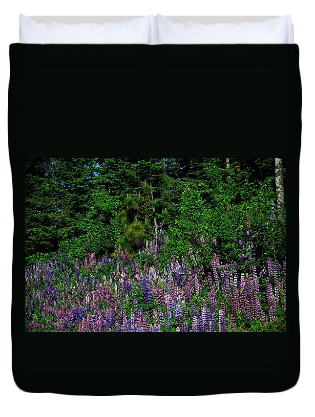 Lupines Duvet Cover featuring the photograph Lupines by Joi Electa