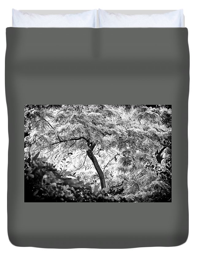 Tree Duvet Cover featuring the photograph Lush by David Resnikoff