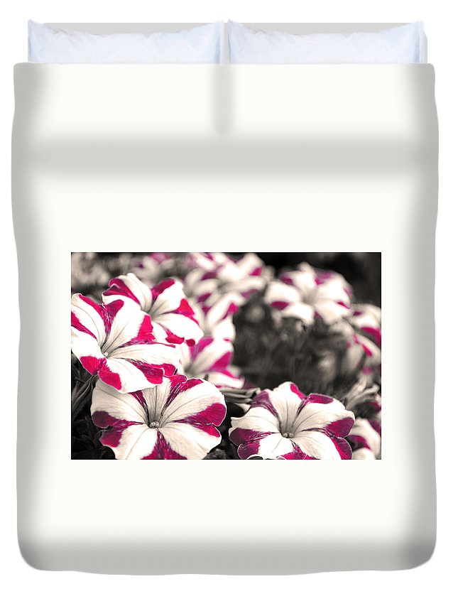 Magenta Flower Duvet Cover featuring the photograph Magenta Flowers by Sumit Mehndiratta