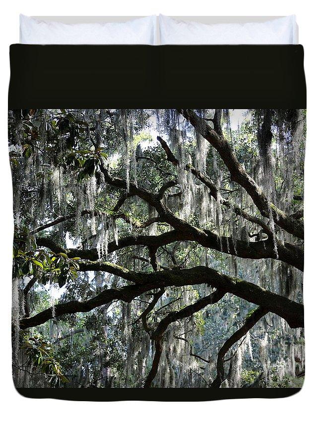 Live Oak Tree Duvet Cover featuring the photograph Magnolia Meets Live Oak by Carol Groenen