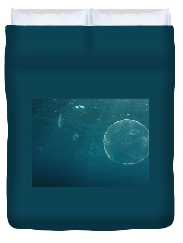 Duvet Cover featuring the photograph Many Moon Jellies by Kimberly Mohlenhoff