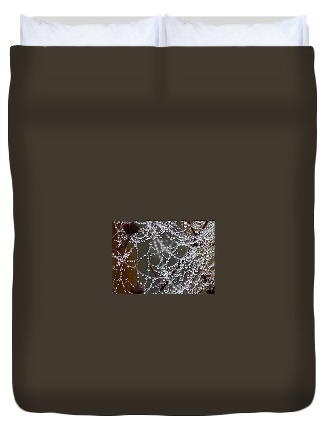 Spider Web Duvet Cover featuring the photograph Marsh Globes by Carol Groenen