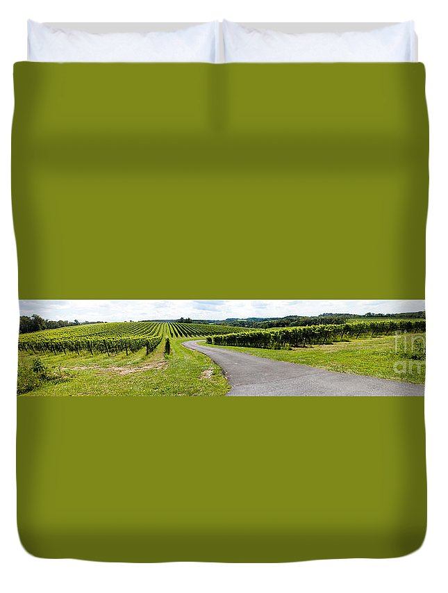 Landscape Duvet Cover featuring the photograph Maryland Vineyard Panorama by Thomas Marchessault