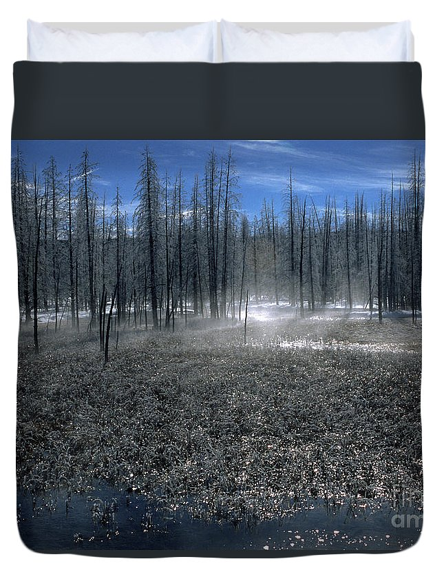 Bronstein Duvet Cover featuring the photograph Midway Geyser Area by Sandra Bronstein