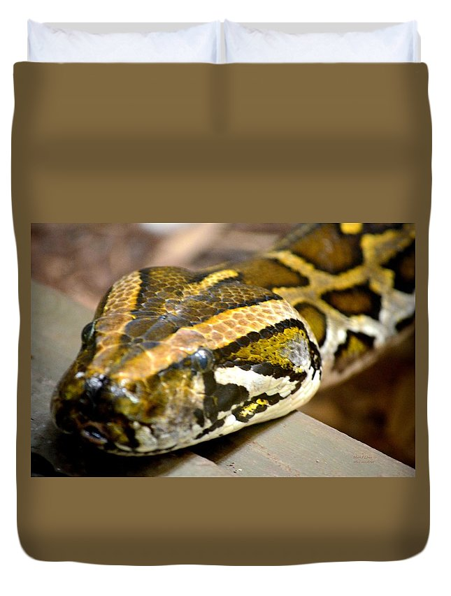 Mighty Duvet Cover featuring the photograph Mighty Python by Maria Urso