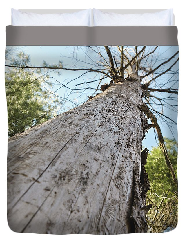 Usa Duvet Cover featuring the photograph Mighty Tree And The Bark Beetle by LeeAnn McLaneGoetz McLaneGoetzStudioLLCcom