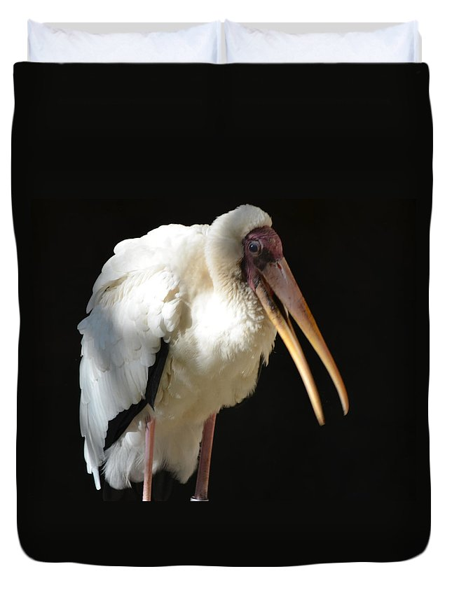 Milk Duvet Cover featuring the photograph Milky Stork by Maggy Marsh