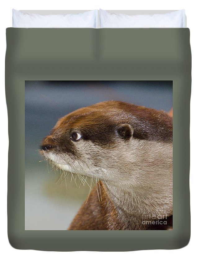 Sea Otter Duvet Cover featuring the photograph Mischief by Jim And Emily Bush