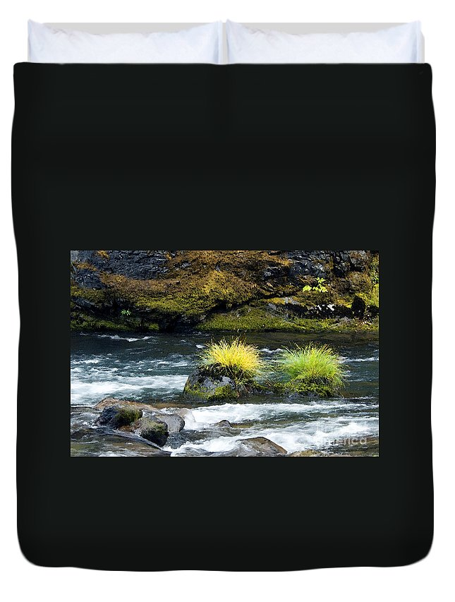 Misery Creek Duvet Cover featuring the photograph Misery Creek by Betty LaRue