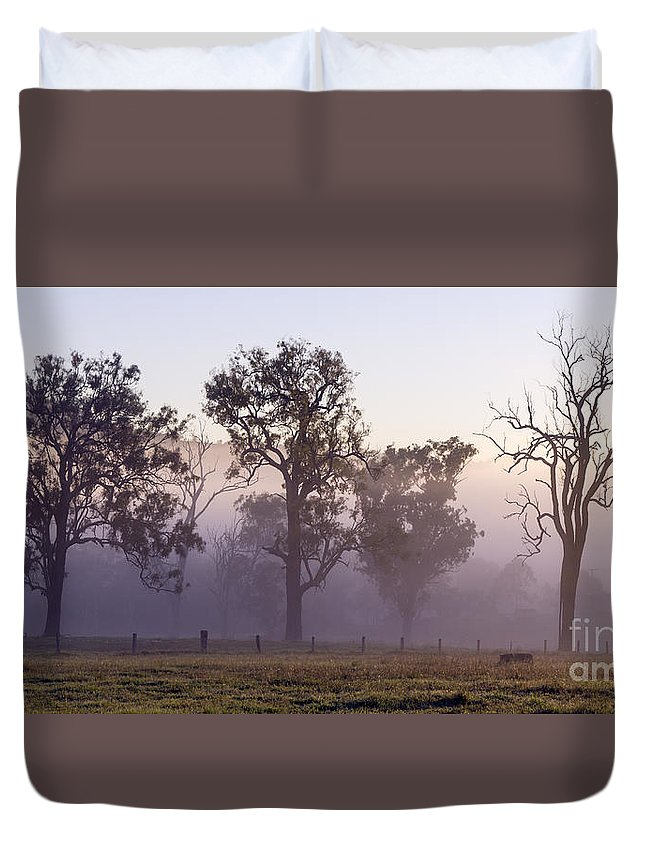 Three Trees Duvet Cover featuring the photograph Misty Dawn by Carole Lloyd