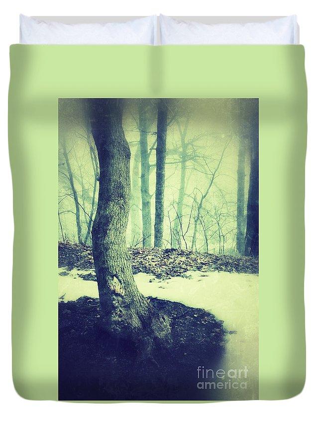 Rural Duvet Cover featuring the photograph Misty Winter Woods by Jill Battaglia