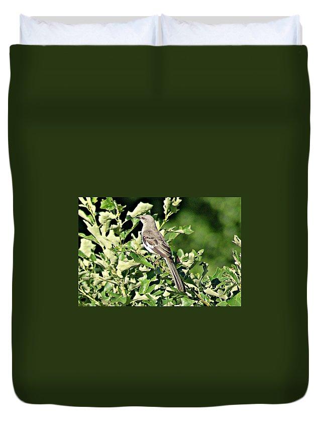 Mockingbird Duvet Cover featuring the photograph Mockingbird I by Joe Faherty